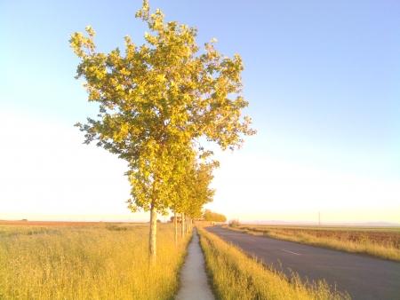19 km con questo paesaggio