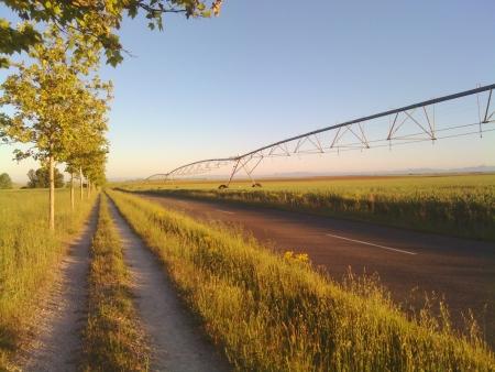 Ogni tanto qualche impianto di irrigazione per variare...