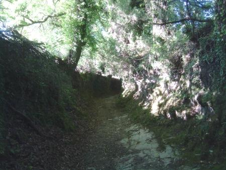 Cammino galiziano