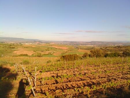Il paesaggio della La Rioja