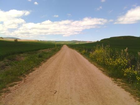 Il cammino in la Rioja