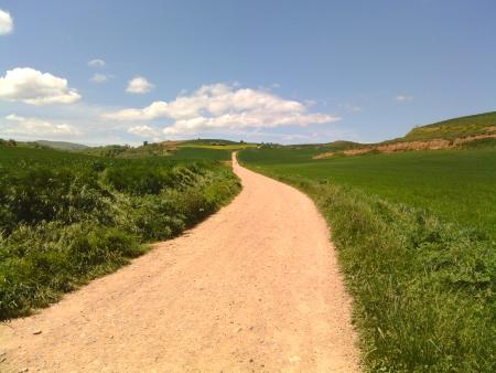 Bel cammino in la Rioja