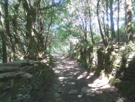 Il sentiero di oggi